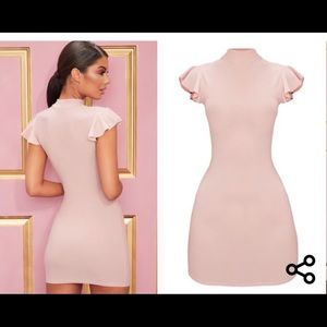 NWT PLT US 0 bodycon rose dress